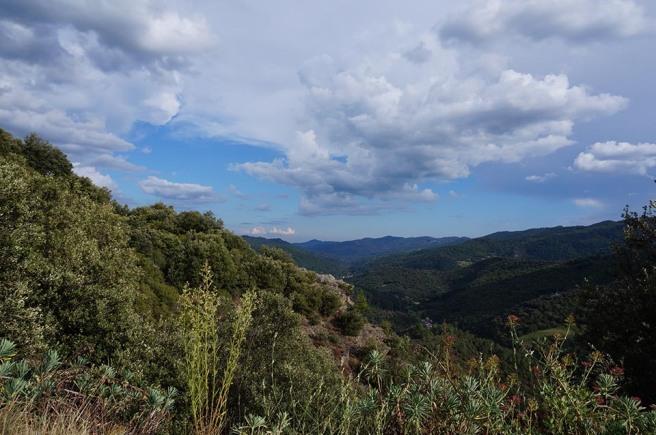 marlen-sauvage-montagne