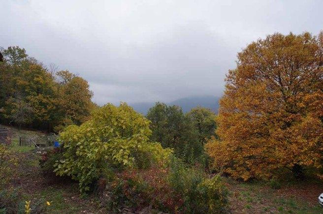 marlen-sauvage-paysage