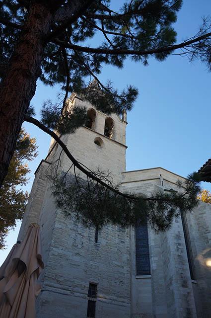 marlen-sauvage-Avignon