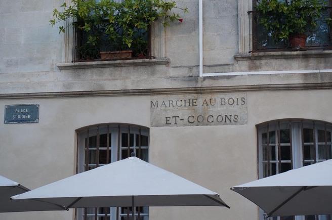 marlen-sauvage-Avignon0