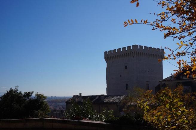 marlen-sauvage-Avignon9.5