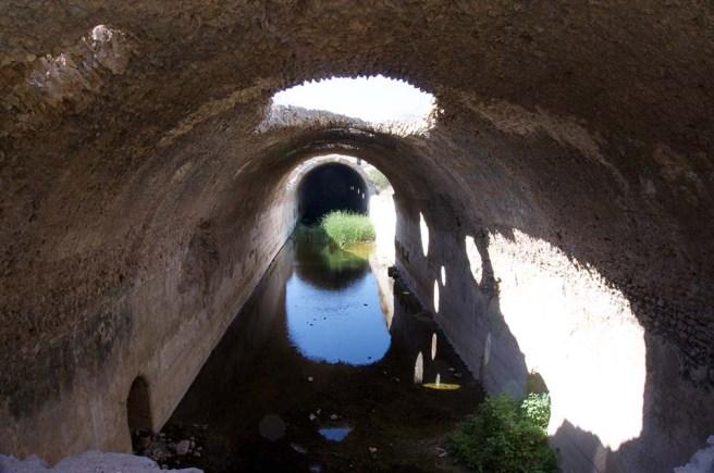 marlen-sauvage-irrigation