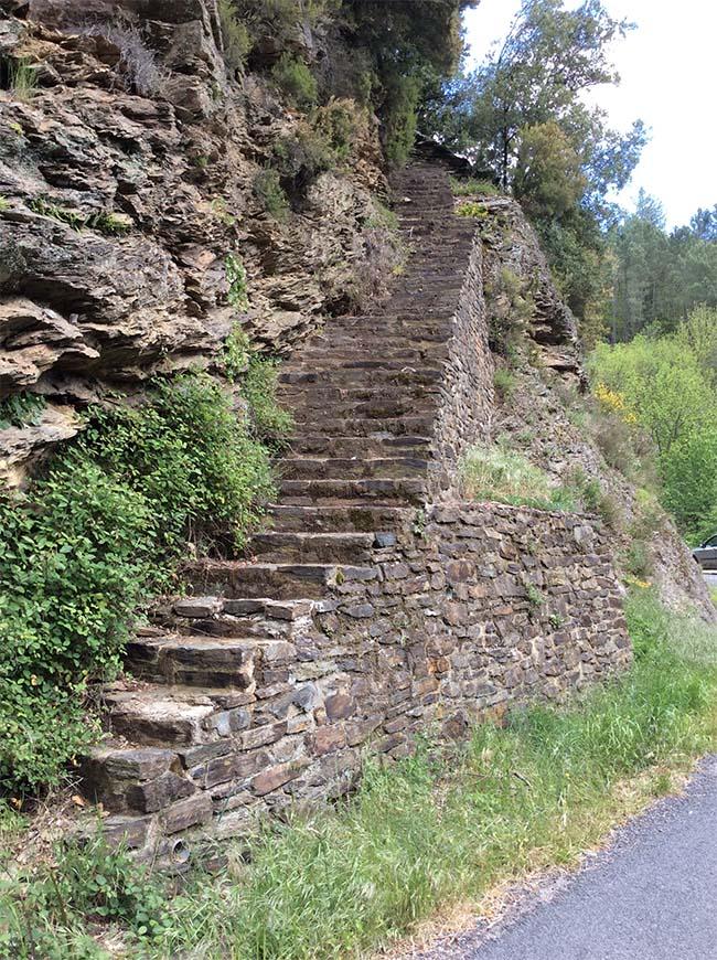 marlen-sauvage-escalier