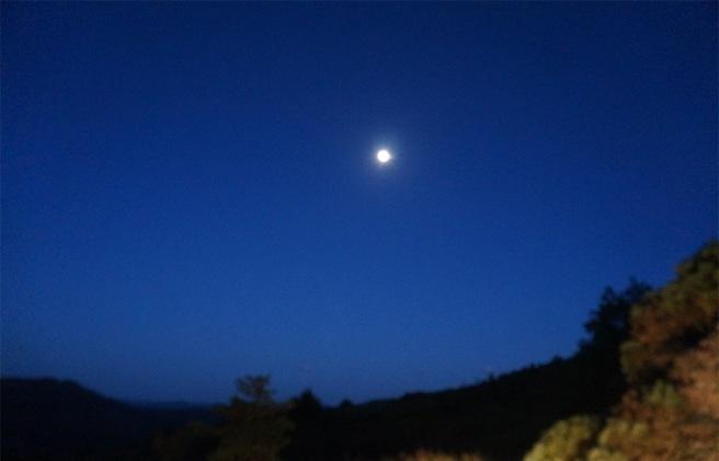 marlen-sauvage-œil-de-lune