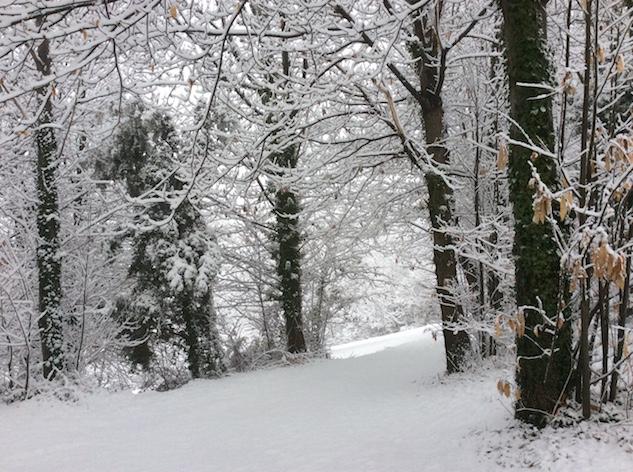 marlen-sauvage-neige