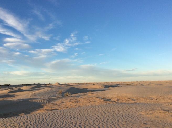 marlen-sauvage-desertA2
