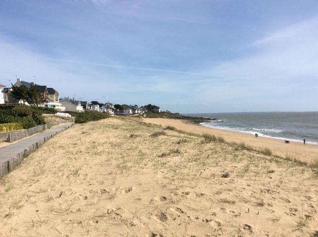 marlen-sauvage-dune