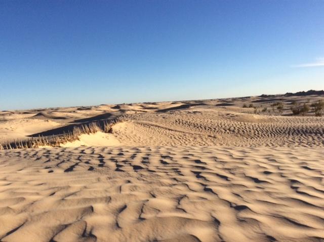 marlen-sauvage-desert1