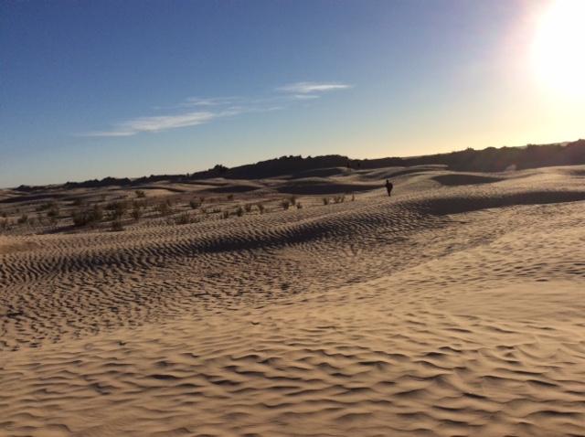 marlen-sauvage-desert2