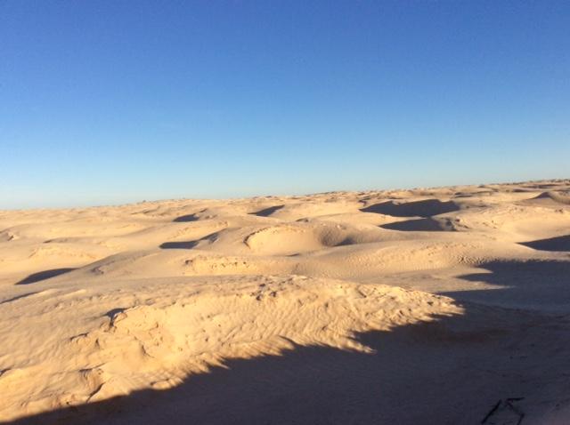 marlen-sauvage-desert3
