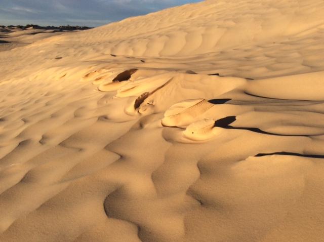 marlen-sauvage-desert4