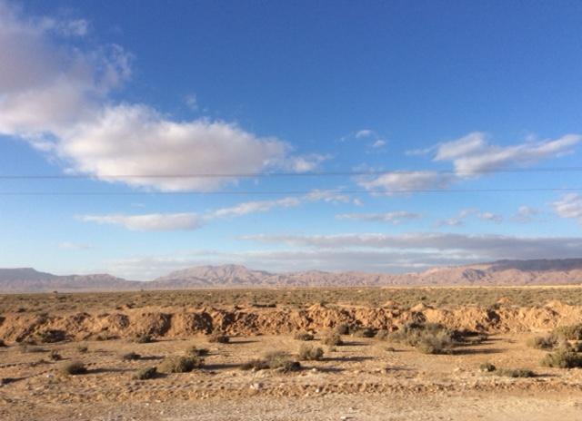 marlen-sauvage-sud-tunisien1