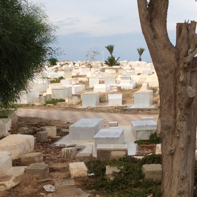 marlen-sauvage-construire-la-ville-tombes
